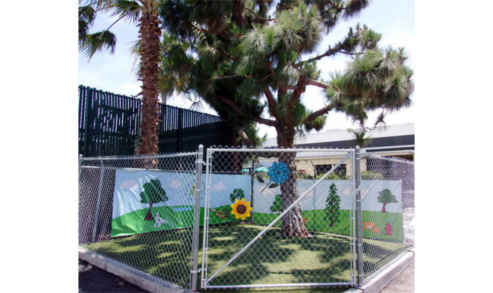 Your dog can safely run around outside at Plaza Del Amo Animal Hospital & Pet Keeper