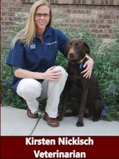 Dr. Erin McNulty at animal hospital in Pocatello