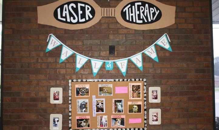 Laser Sign at  Northgate Small Animal Hospital