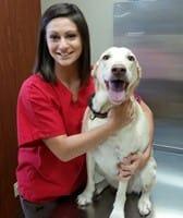 Marissa at Collinsville Animal Clinic