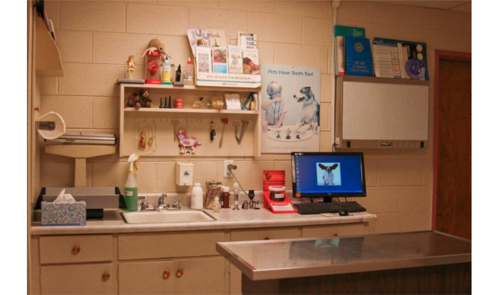 An exam room at Vacaville Animal Care Center