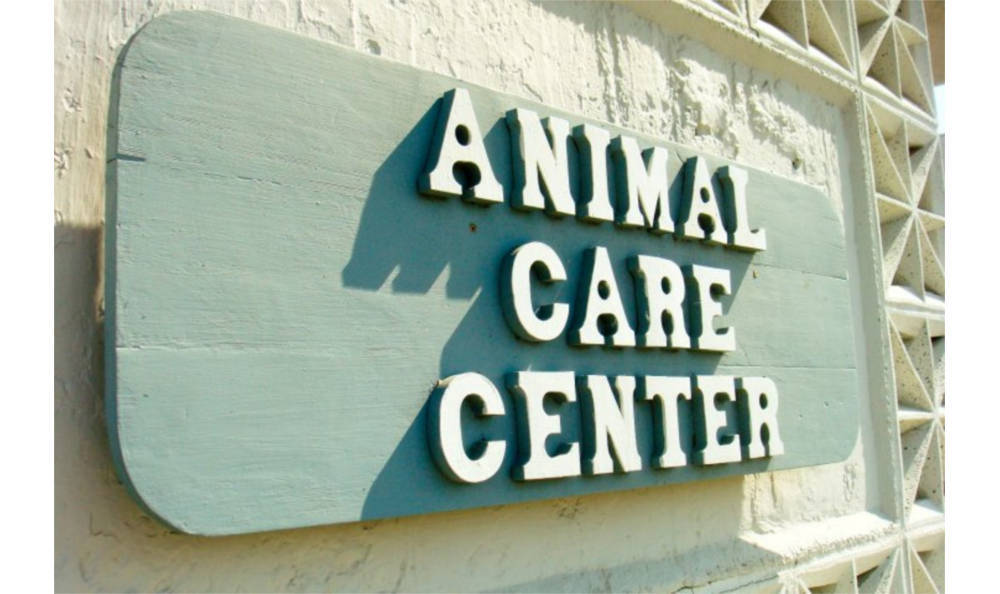 Animal hospital in Vacaville signage