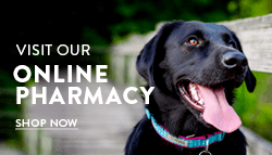 Online Veterinary Pharmacy