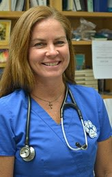 Dr. Cortney Wright at animal hospital in Alachua
