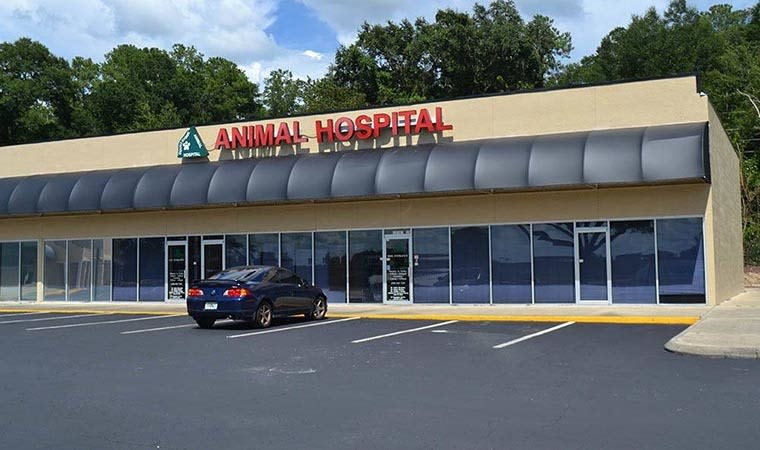 Countryside Animal Hospital in Alachua, FL
