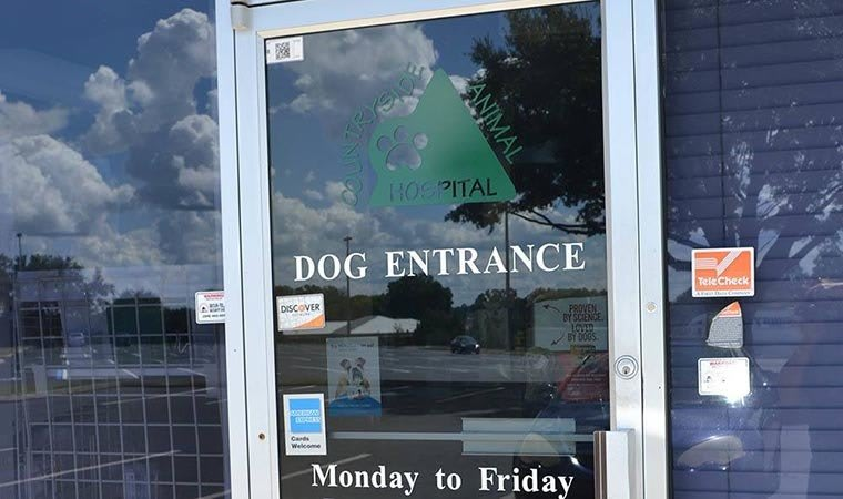 Dog Entrance in Alachua, FL