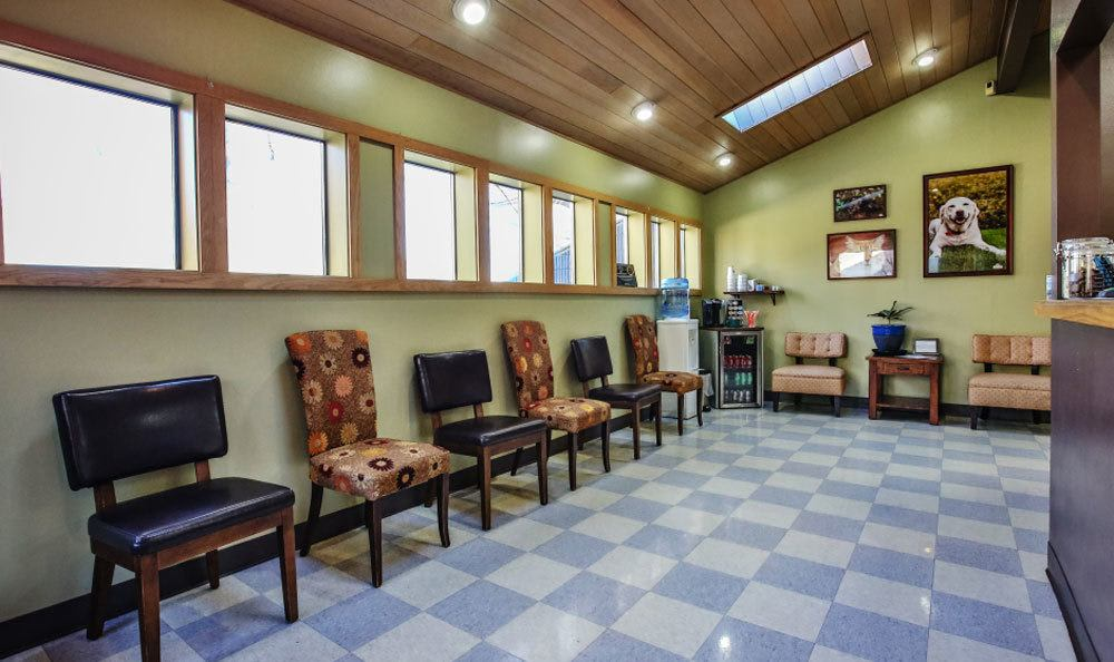 Lobby at Kitsap Veterinary Hospital