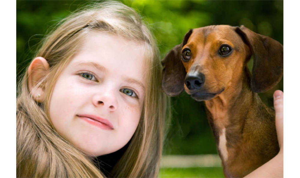 A girl and her dog at Kitsap Veterinary Hospital in Port Orchard, Washington