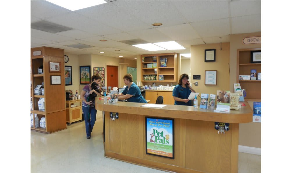 Front desk at Towne North Animal Hospital