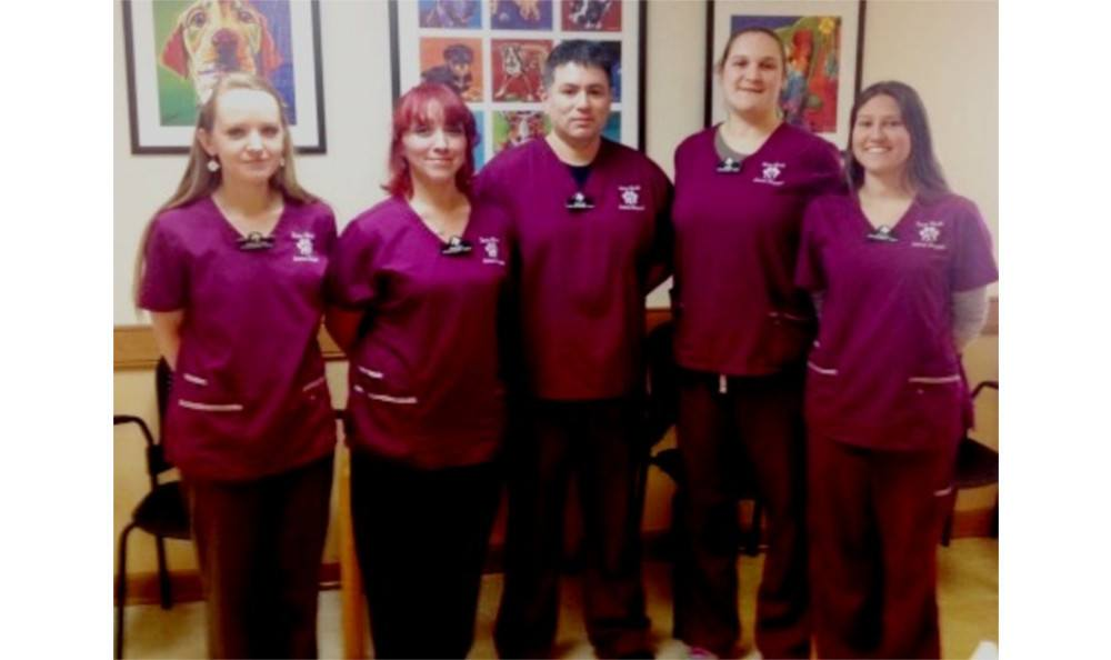 The team at Towne North Animal Hospital
