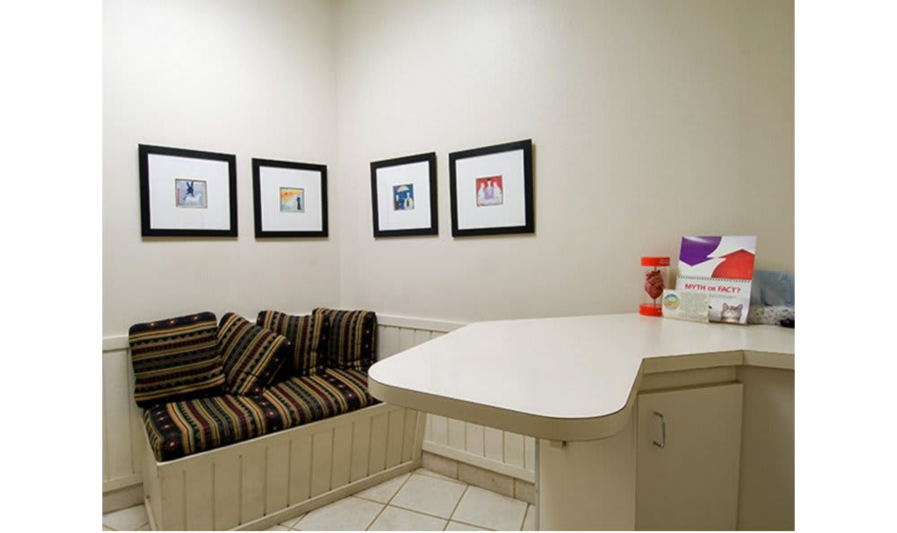 Exam room at Countryside Animal Hospital of Tempe
