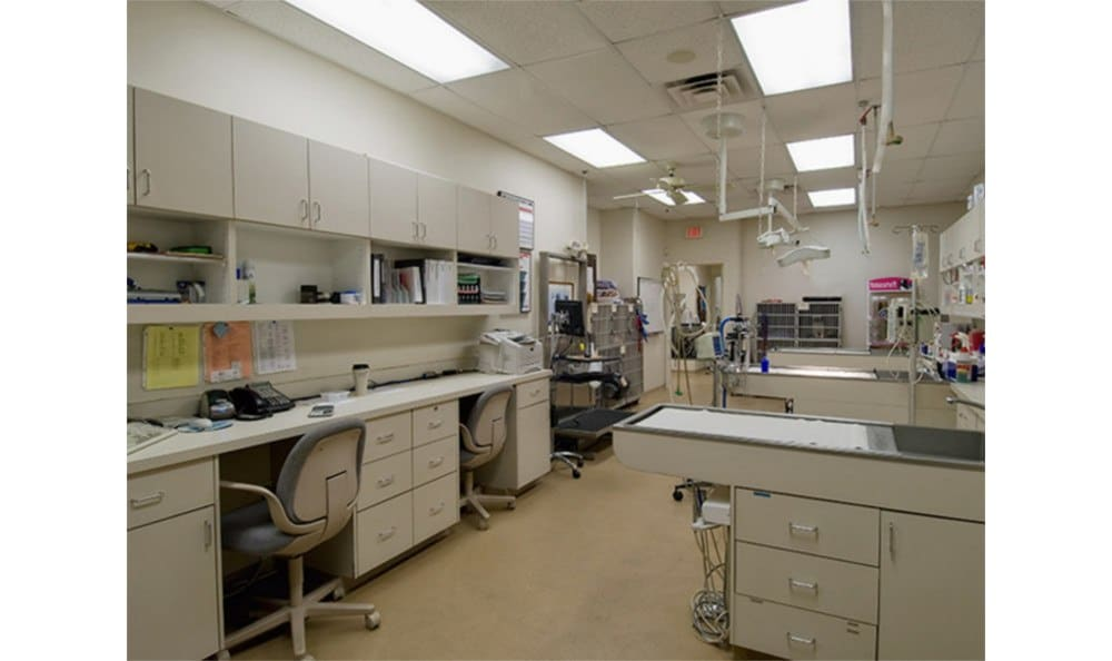 Our treatment area at Countryside Animal Hospital of Tempe
