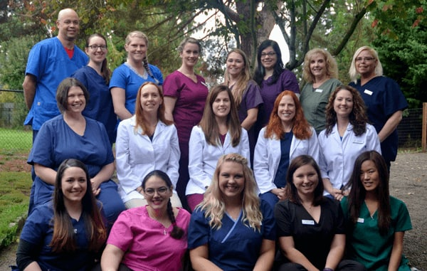 The Team at Tigard Animal Hospital