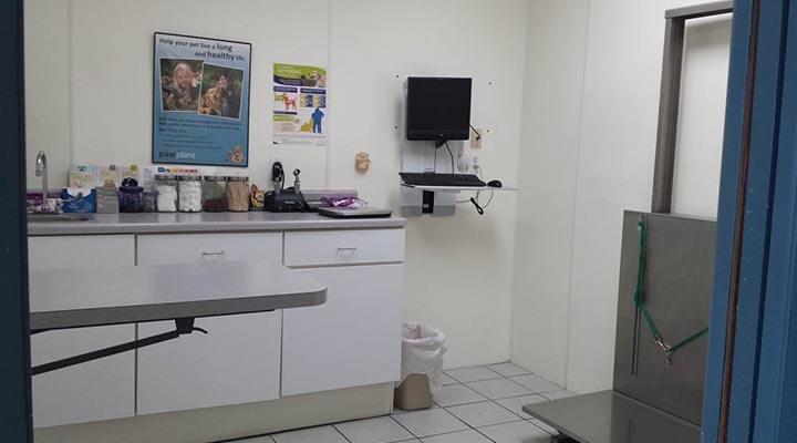 Caton Crossing Animal Hospital exam room 3