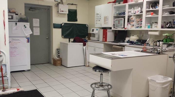 Caton Crossing Animal Hospital lab