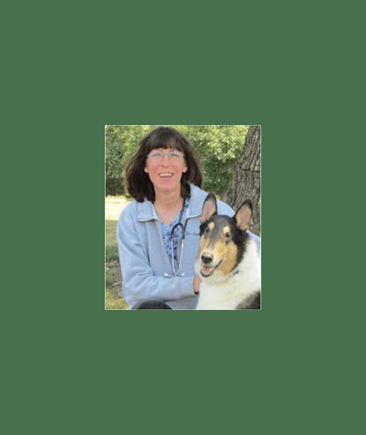 Lynn Sebek Associate Vet at Plainfield Animal Hospital