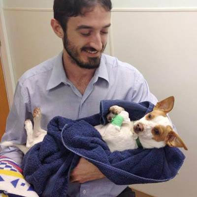 Dr. Brandon Wilson at Pacifica Animal Hospital