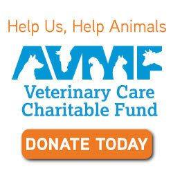Lifetime Animal Care Center | San Diego Animal Hospital
