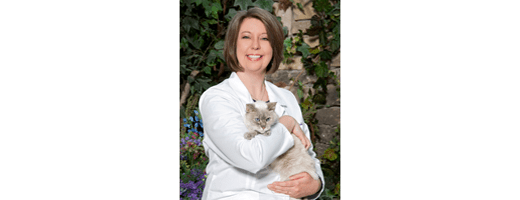 Dr. Jenni Mitchell of Thiensville-Mequon Small Animal Clinic in Thiensville
