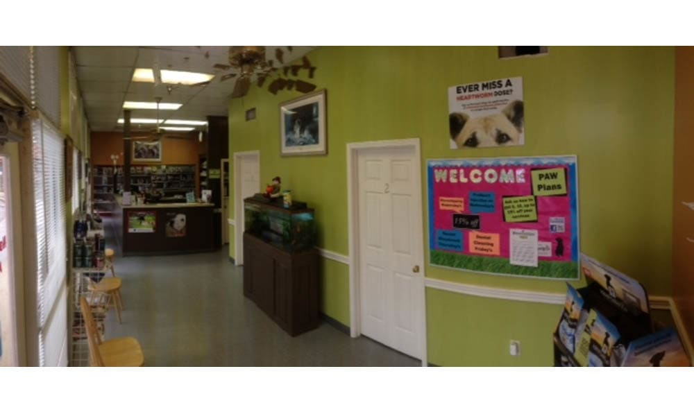 Lobby Area In Northwest Rankin Animal Clinic In Flowood