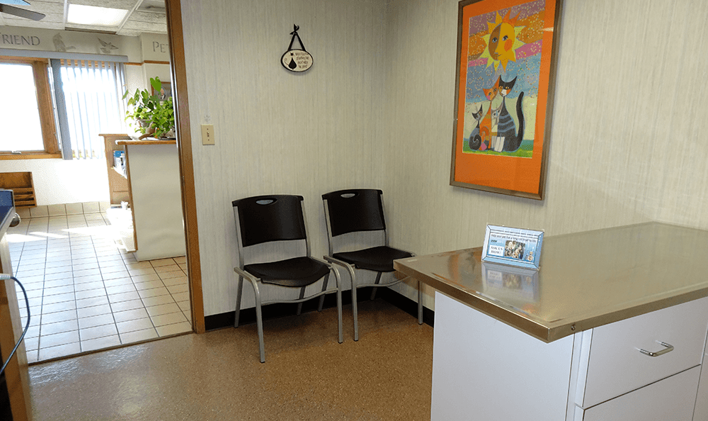 Exam room 2 at Sandwich Veterinary Hospital