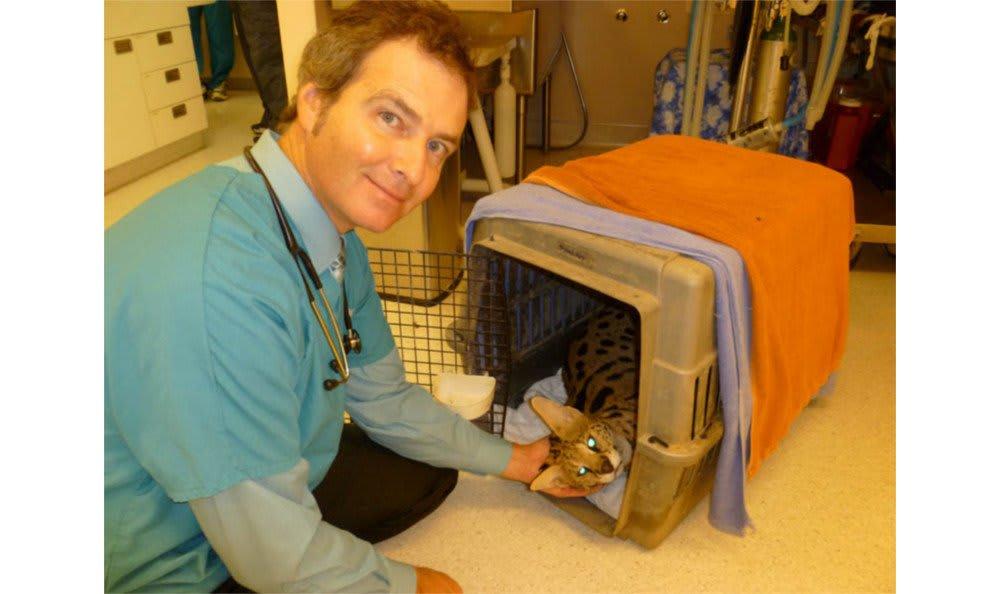 Taking care of an exotic pet at Santa Clara Animal Hospital