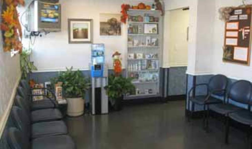 South Shore Animal Hospital Waiting Room In Wantagh