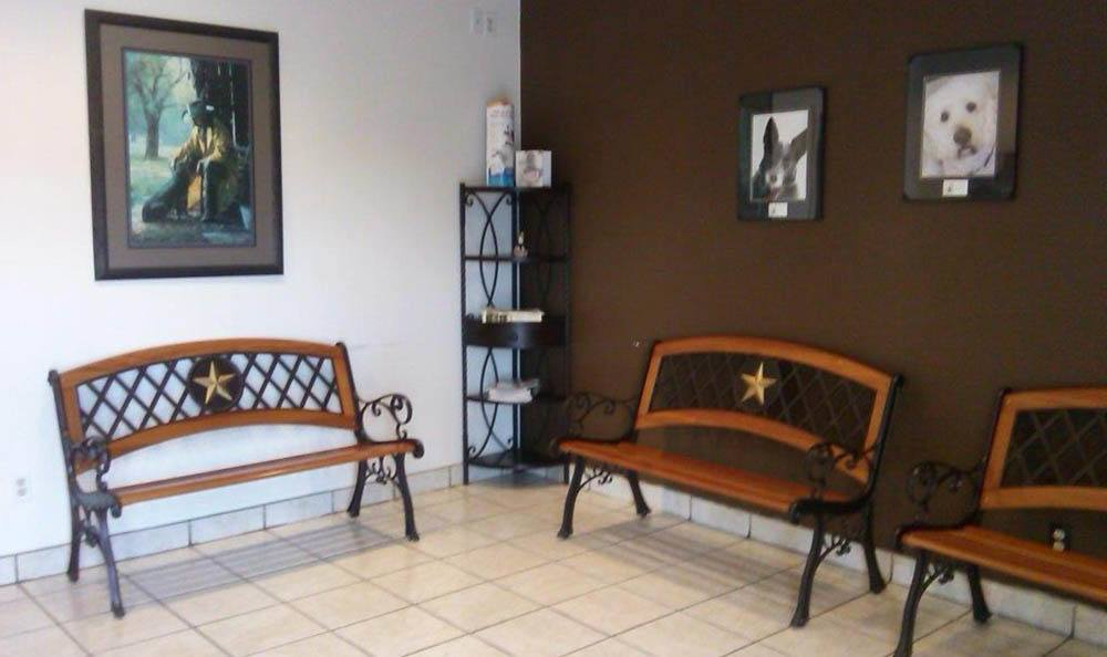 Canine Waiting Room At Friendswood Animal Clinic