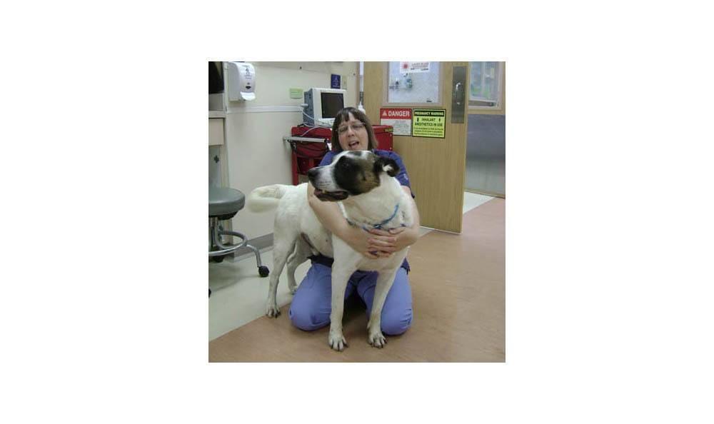 Carole Hugging Al At Camboro Veterinary Hospital