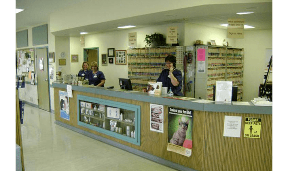 Camboro Veterinary Front Desk