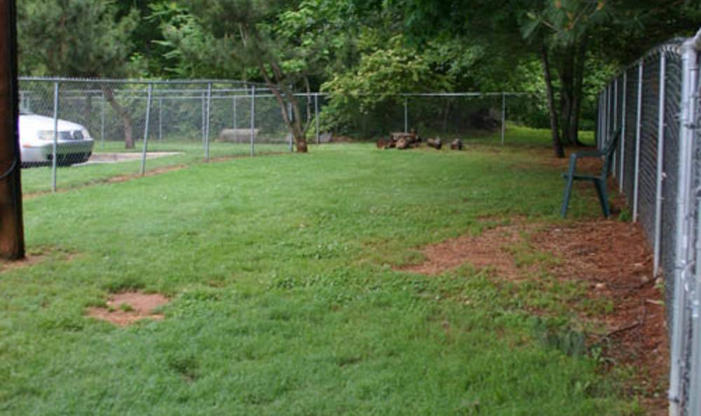 Large Fenced Back Yard At Lenoir Veterinary Hospital