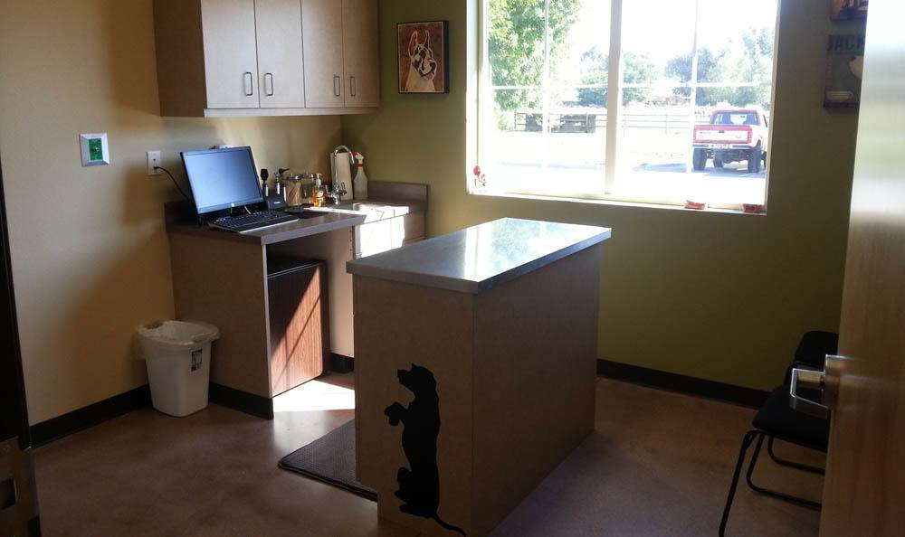 Exam Room At Hendricks Veterinary Hospital In Boise