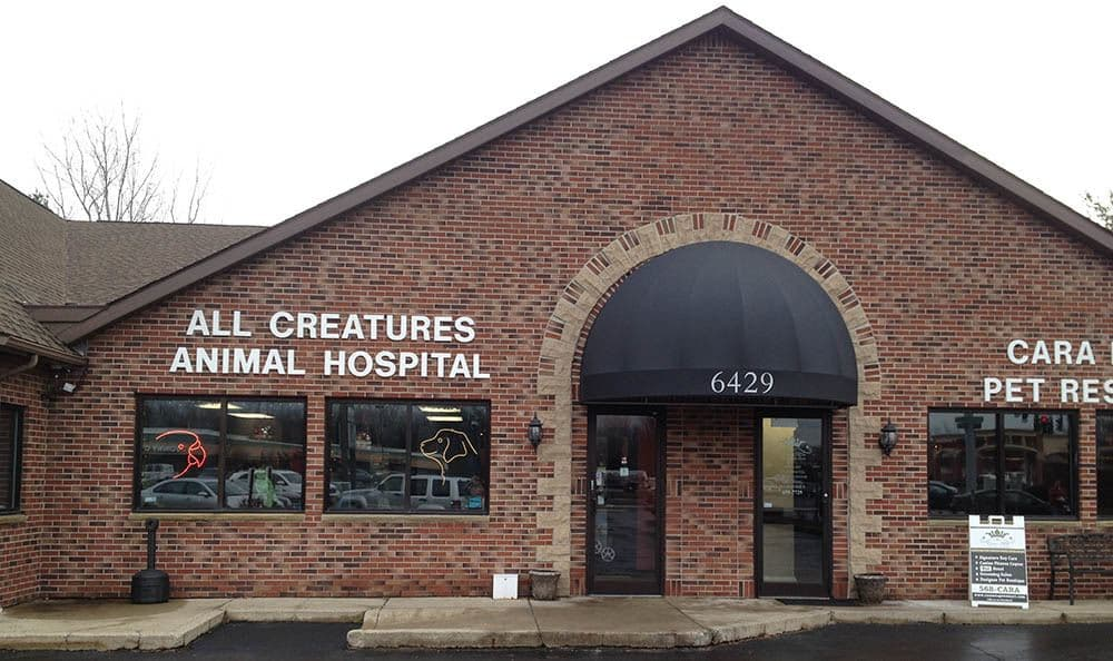 The exterior of All Creatures Animal Hospital