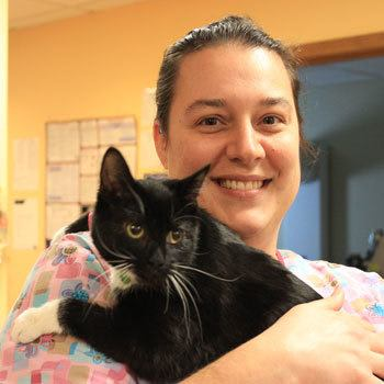 Carrie loves working at City Creatures Animal Hospital