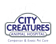 City Creatures Animal Hospital