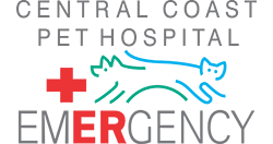 Central Coast Pet Emergency Clinic