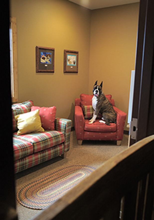 Chair doggo