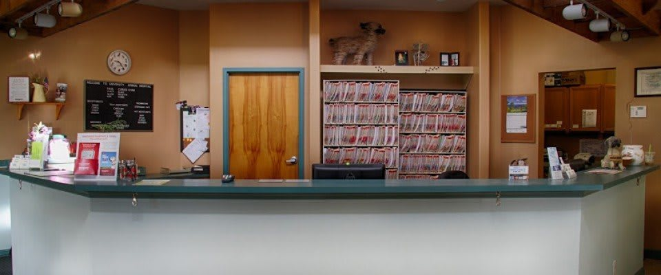 Front desk at University Animal Hospital in Orlando