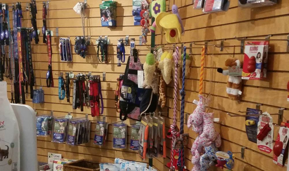 Great Selection Of Toys And Supplies At Merrimack Veterinary Hospital