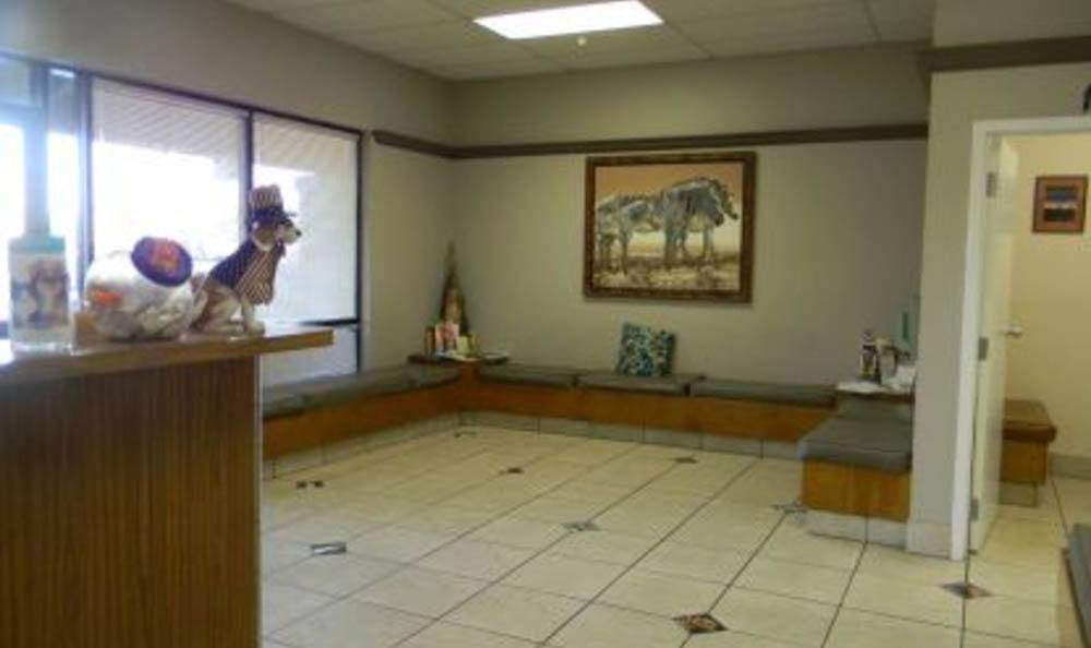All Creatures Animal Clinic Front Lobby
