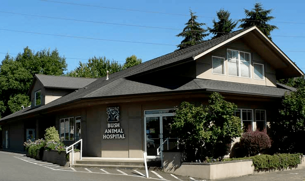 Exterior view of our animal hospital in Eugene