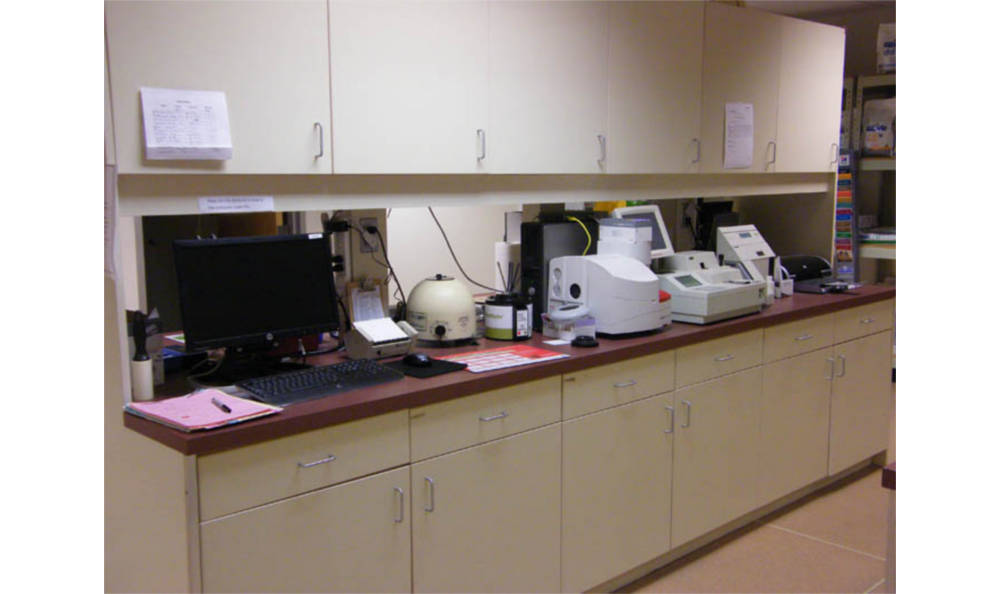 Main lab at Chester Animal Hospital