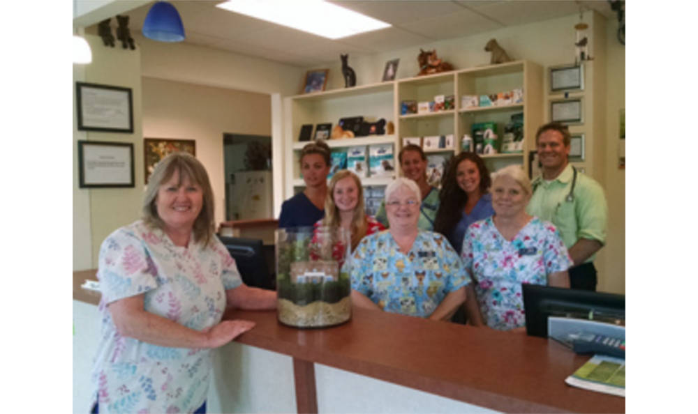 The team at Chester Animal Hospital