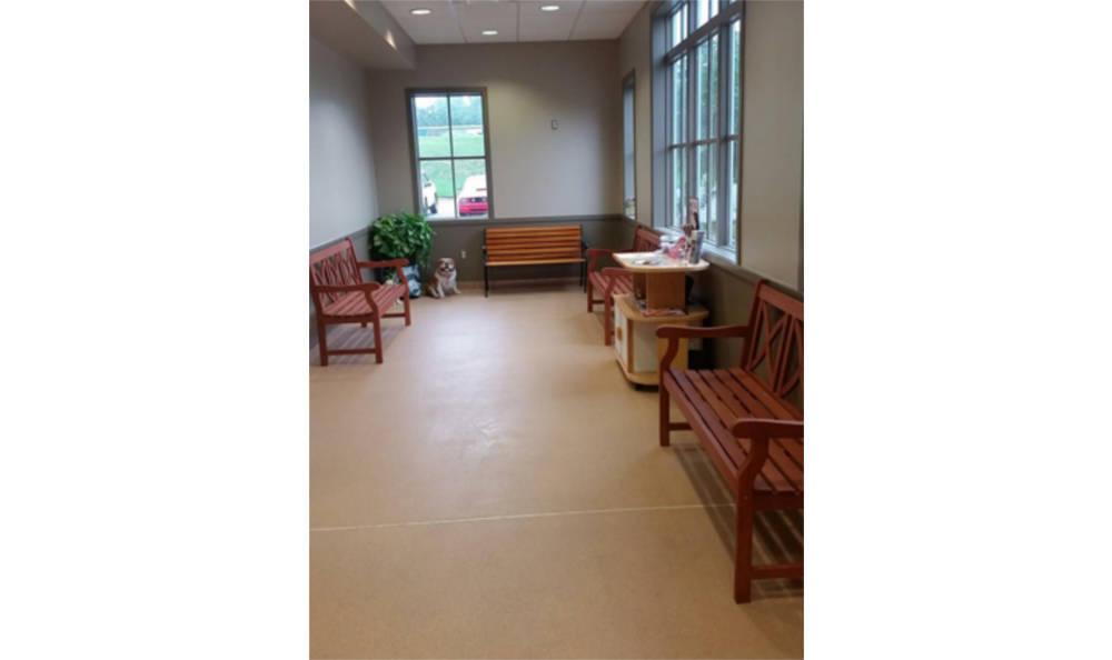 The waiting room at Centralia Animal Hospital
