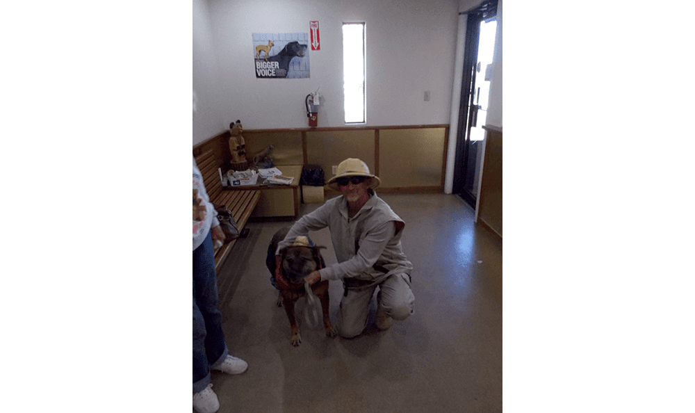 Zookeeper costume on pet in Roswell