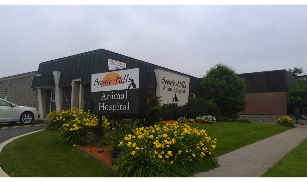 Saint Paul animal hospital exterior