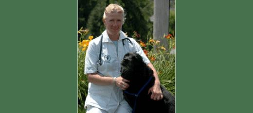 Holly Willward at Danvers Animal Hospital