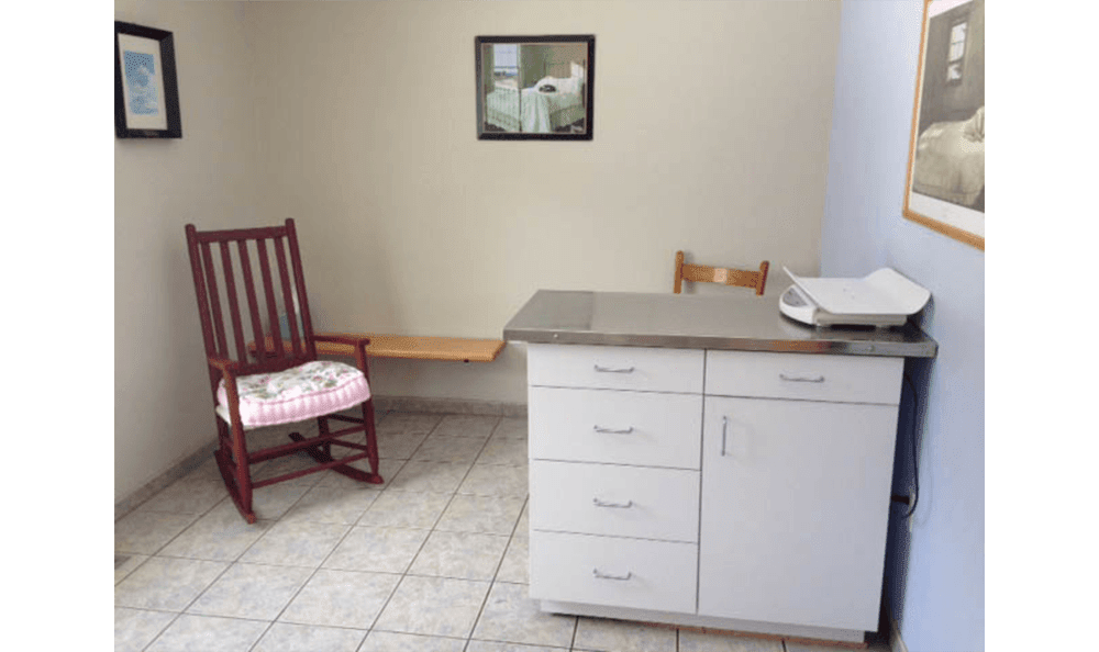 Danvers Animal Hospital Exam Room