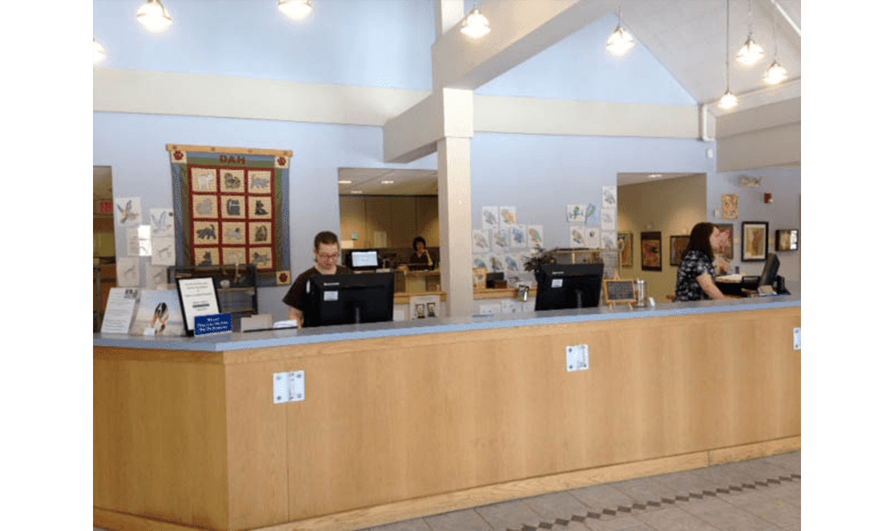 Reception Desk At Danvers Animal Hospital