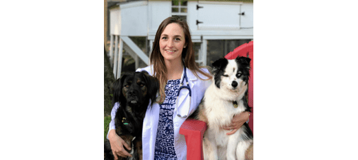 Dr. Katherine Blakeley at Danvers Animal Hospital